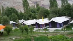 Valley Flower Camp, Luxery Camp in Nubra Leh Ladakh, Top Camp In Ladakh